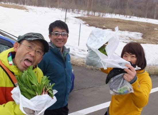 4/19(日) アイヌネギ収穫!